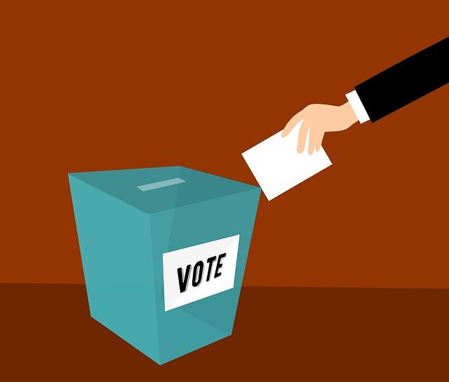 Volební proces