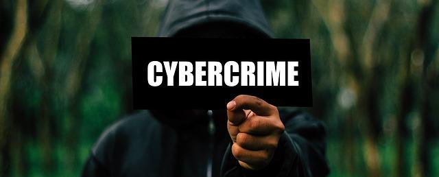 kybernetický zločinec